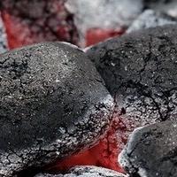 Kannibalen beim Grillen