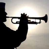 Trompeter mit Hirn