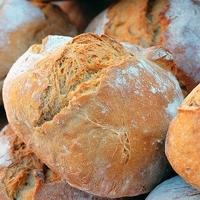 Brot und Gummi