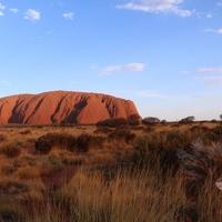 Neu in Australien